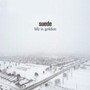 Suede Life Is Golden
