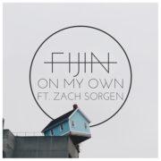 FIJIN - On my own