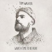 Tom Walker Angels