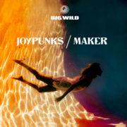 Big Wild Joypunks