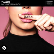 Tujamo Say What You Wanna