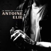 Antoine Elie La rose et l'armure