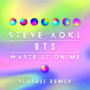 Steve Aoki feat. BTS Waste It On Me (Slushii Remix)