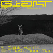 Calvin Harris feat. Rag'N'Bone Man GIANT