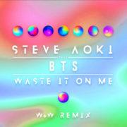 Steve Aoki Waste - It On Me (W&W Remix)