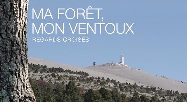 Ma Forêt, Mon Ventoux