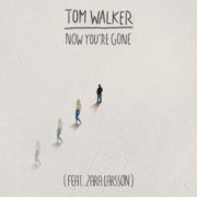 Tom Walker Now You're Gone (feat Zara Larsson)