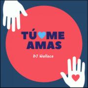DJ WALLACE TU ME AMAS