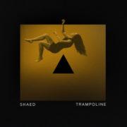 SHAED Trampoline