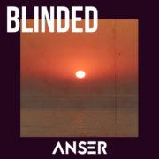 Anser Blinded