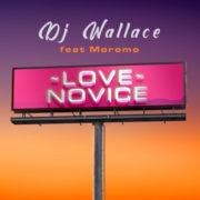 DJ Wallace Love Novice