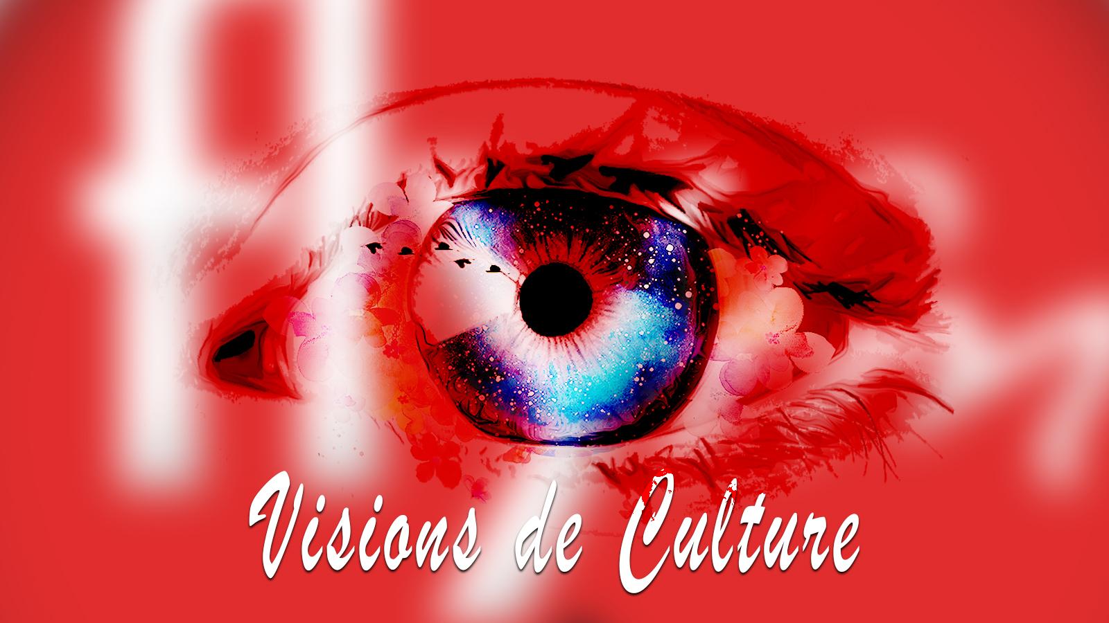 Visions de Culture sur FlyFM
