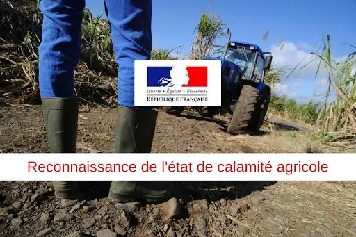 Calamité Agricole