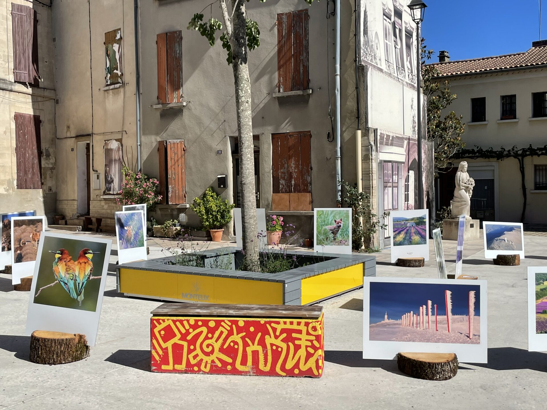 Exposition - Nature en Provence